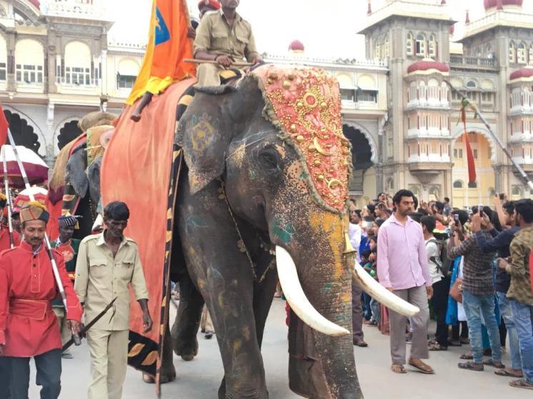 Dasara Elephant Procession
